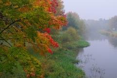 Autumn the-fog-