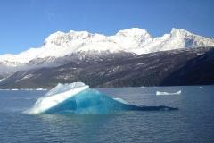 Iceberg Argentina