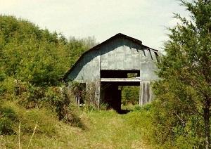 Mary's Barn (800x567)