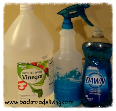 Homemade cleaner with vinegar and dawn homemade ftempo for Vinegar bathroom cleaner