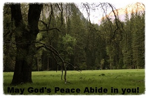 God's Peace - Copy