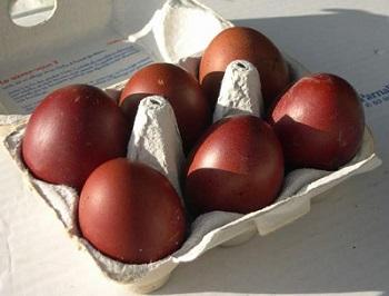 Cuckoo Marans Eggs