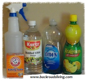 Homemade Bathroom Cleaner