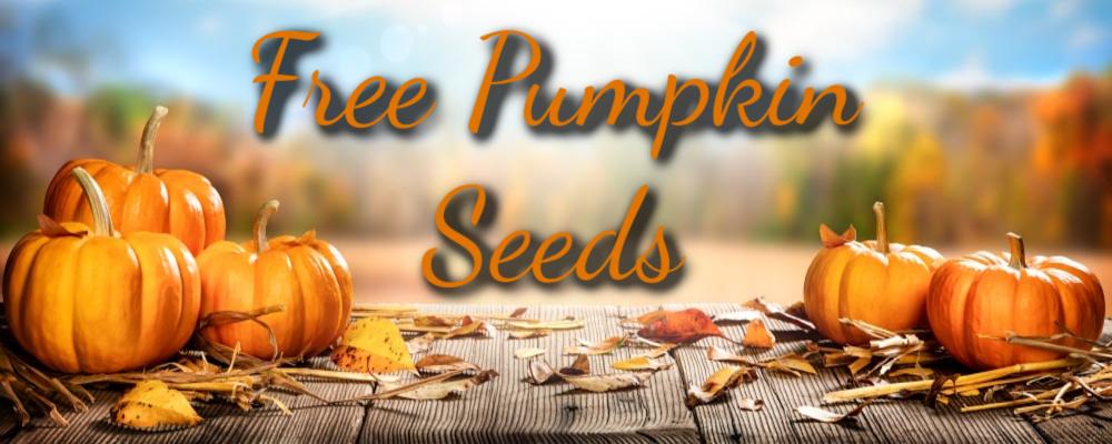Pumpkin Seed Giveaway